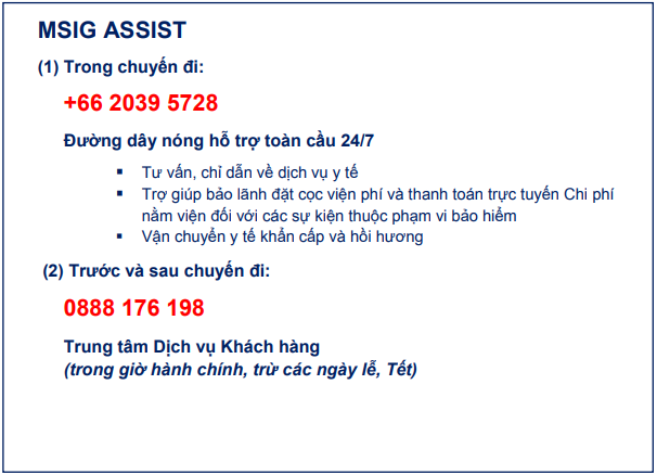 msig assist